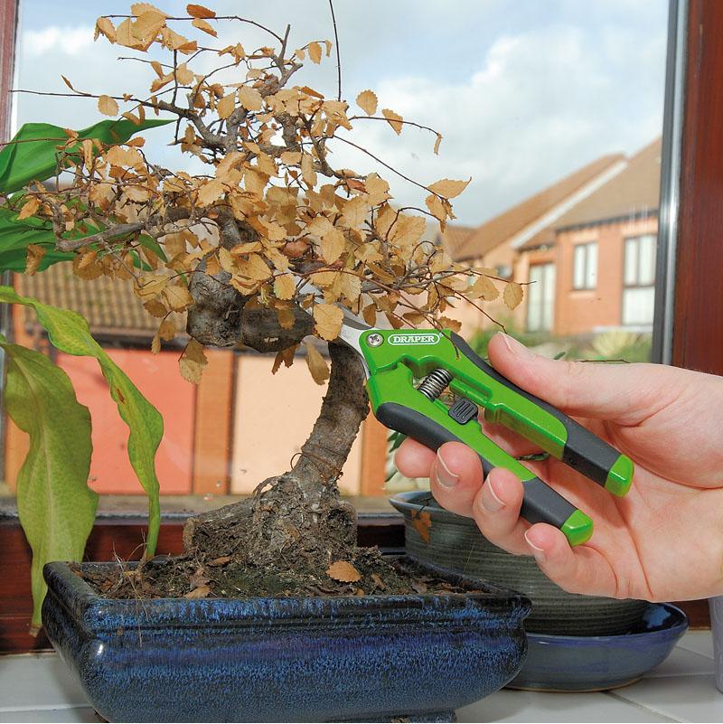 Draper 73728 fleur sécateur droit Élagage Sécateur Bonsai Amincissement
